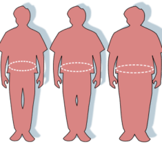 Effect of Appetite Suppressants towards Weight Loss